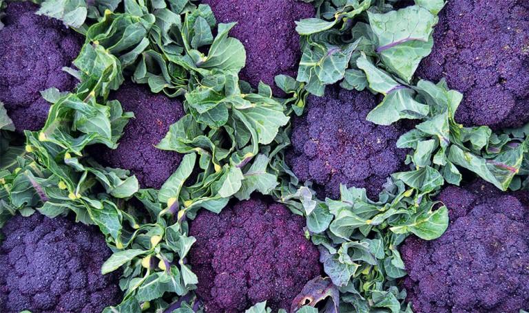 Les nouvelles saveurs des légumes bio