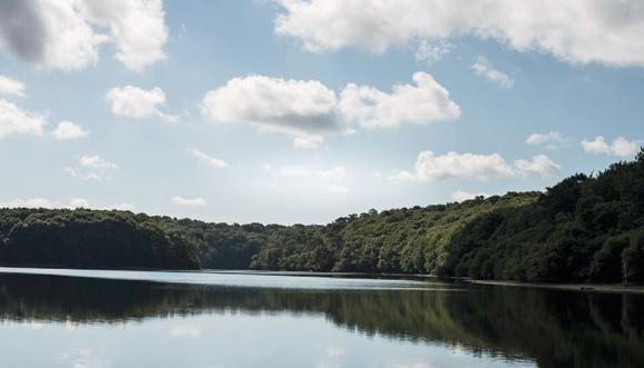 Un bout de chemin… autour du lac de Guerlédan